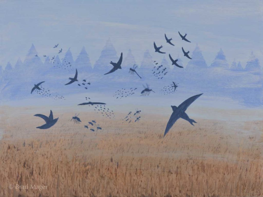 A flock of birds and a swarm of insects attack each other above a mist-enshrouded meadow